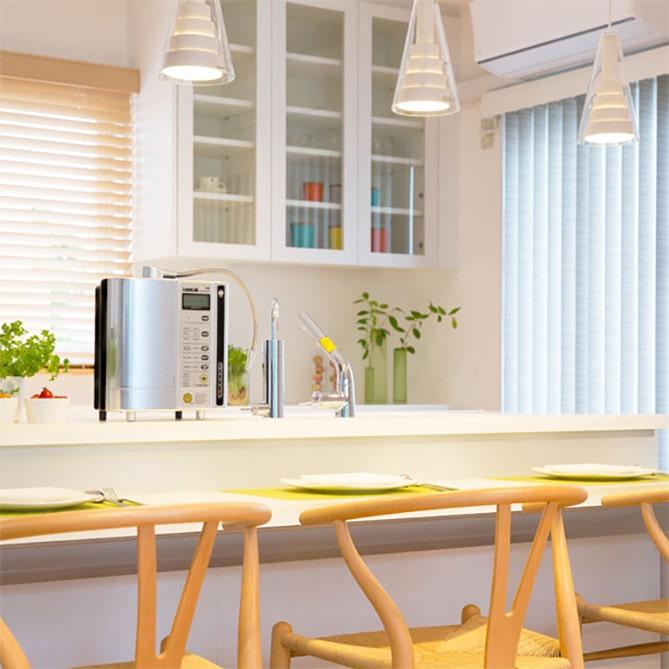 Hình ảnh thực tế máy lọc nước Kangen SD501 Platinum chính hãng của Nhật