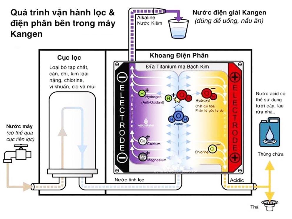 Cơ chế hình thành nước điện giải bên trong máy lọc Kangen K8